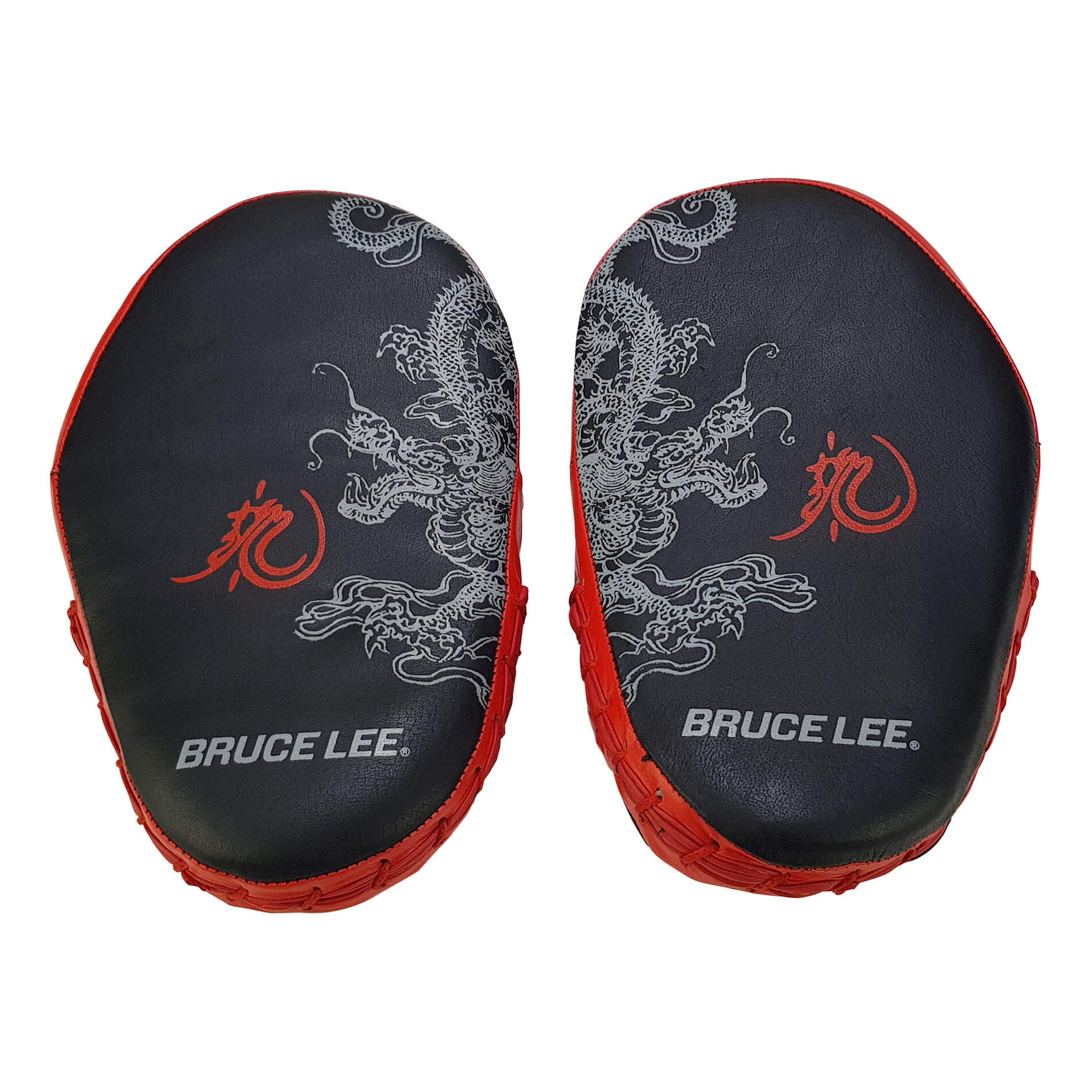 Dragon Coaching Mitts