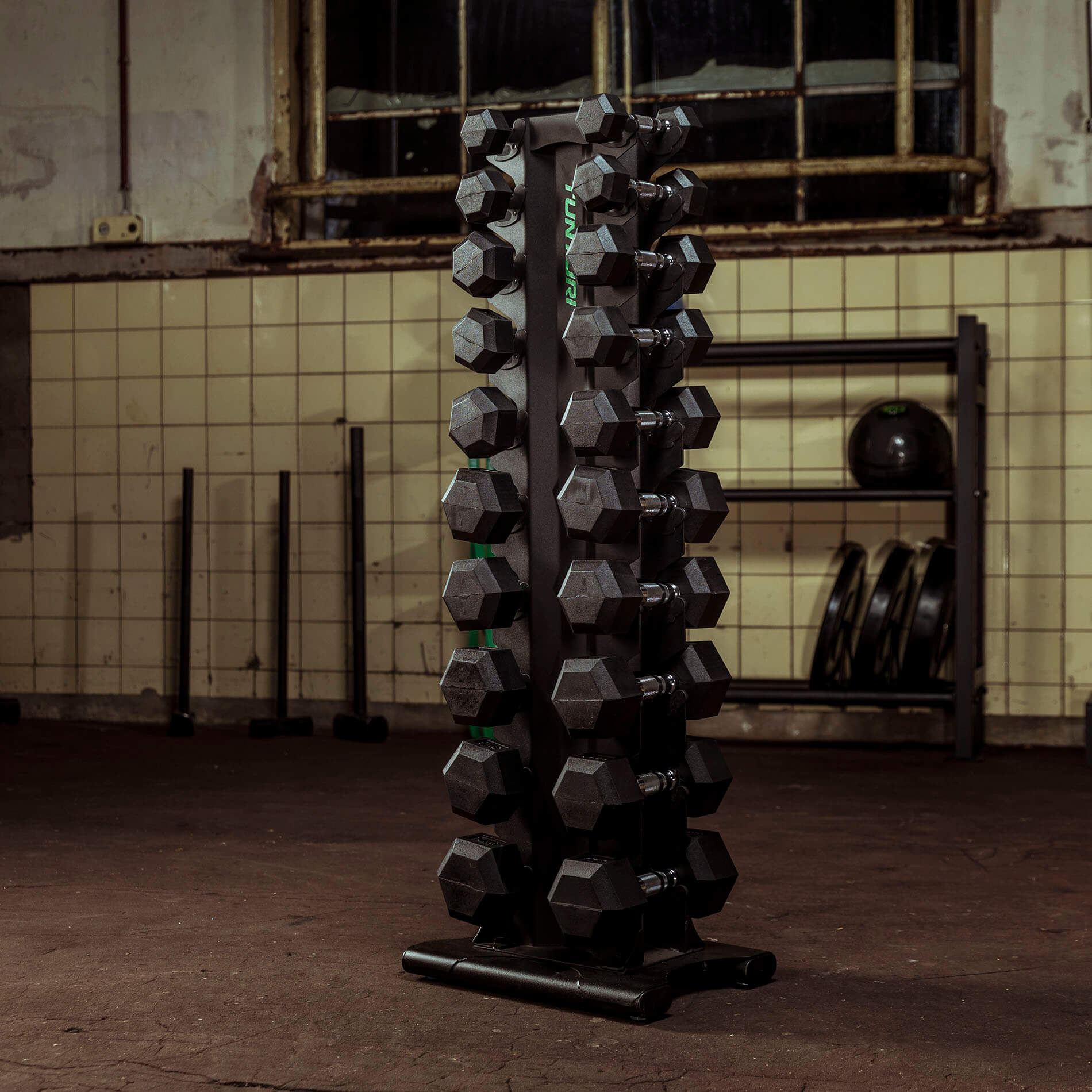 Pro Dumbbell Tower